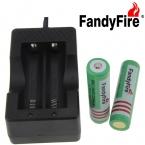 FandyFire ЕС Plug Зарядное Устройство   3.7 В 2000 мАч 18650 Охраняемых Батареи