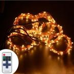 5*5 М 50 LED Открытый Рождество Сказочных Огней Теплый Белый Медный Провод LED Огни Строки Звездное Свет   Адаптер питания   Диммер