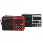 Цифровой Fm-радио Приемник с MP3 TF Карта USB Disk Спикер с Аккумуляторная Батарея Fm-радио Y4171