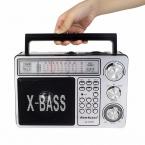 Портативный Fm-радио Bluetooth Мультимедиа Спикер Площади REC Рекордер Поддержка Расширение Микрофон Радио FM Y4381D